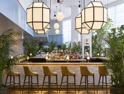 LuxeGetaways - Luxury Travel - Luxury Travel Magazine - Luxe Getaways - Luxury Lifestyle - Hilton - Curio Collection - Curio DNA Gene Quiz - Curio by Hilton - The Diplomat - Point Royal Bar