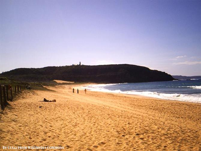 Stunning Beach Destination in Australia - Palm Beach