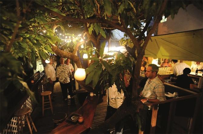 The Dove, restaurant, jazz and wine bar in Tortola, BVI