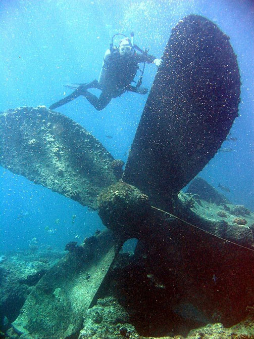 Diving Chuuk Lagoon Discovering Underwater Spectacles 1