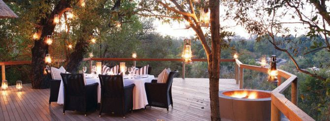 Top 5 Safari Stays in South Africa Londolozi Game Reserve