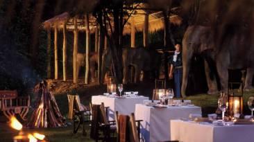 Four Seasons Golden Triangle Elephant Camp Dinner - Courtesy of Four Seasons