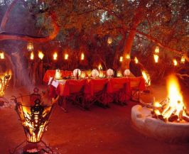 Makanyane Safari Lodge - Dining Under the Stars - Courtesy of Makanyane Lodge