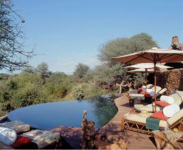 Makanyane Safari Lodge - Pool - Courtesy of Makanyane Lodge
