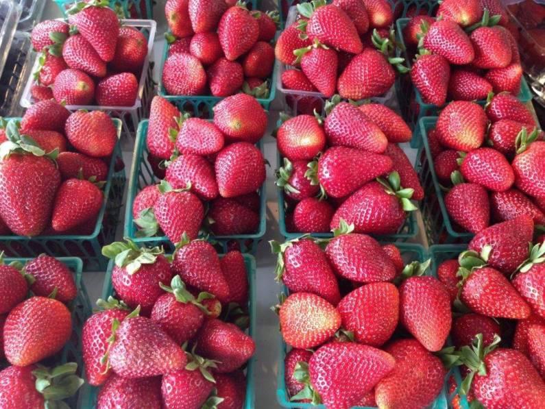 The LA Farmers' Market