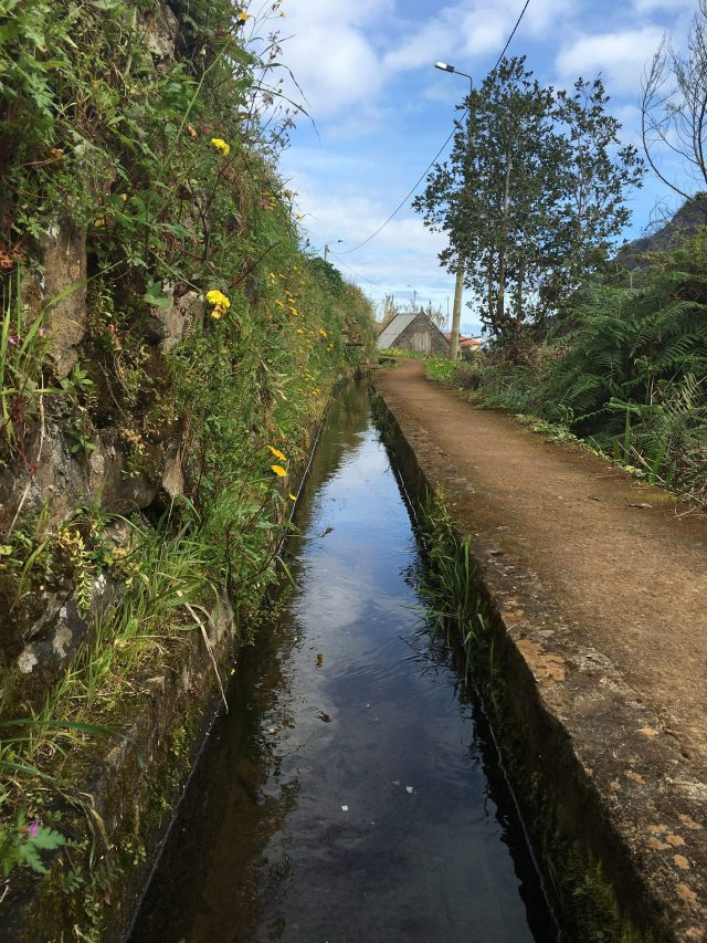Castelejo Levada walk with a water canal built by hand by the ingeneous madeiran ancestors.