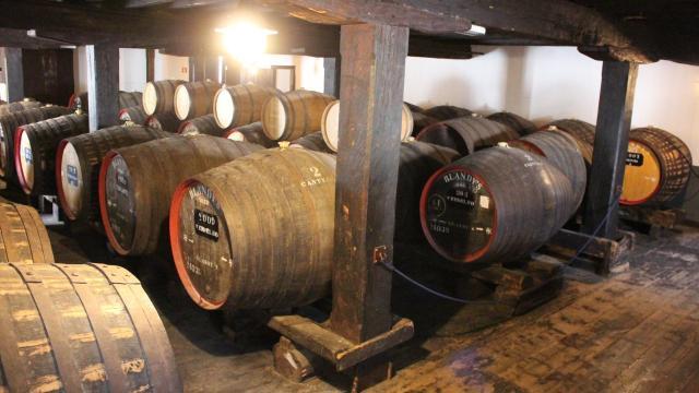 madeira wine tour, madeira wine funchal, madeira wine abv, madeira wine institute, where does madeira wine come from, madeira wine museum, madeira wine Portugal, madeira wine museum funchal, madeira wine tasting,
