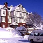 niseko pension