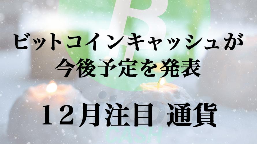 12月注目の通貨!ビットコインキャッシュがハードフォーク予定を発表!