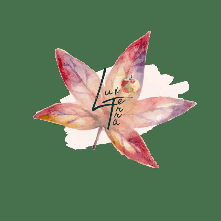 logo automnal du centre de réflexologie plantaire, de luxopuncture et de luminothérapie Psio