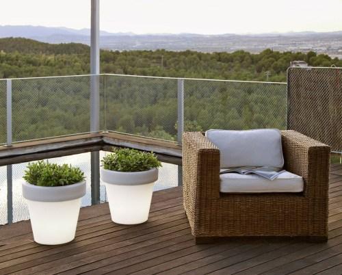 new garden magnolia plant pot 3