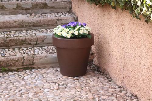 new garden magnolia plant pot 30