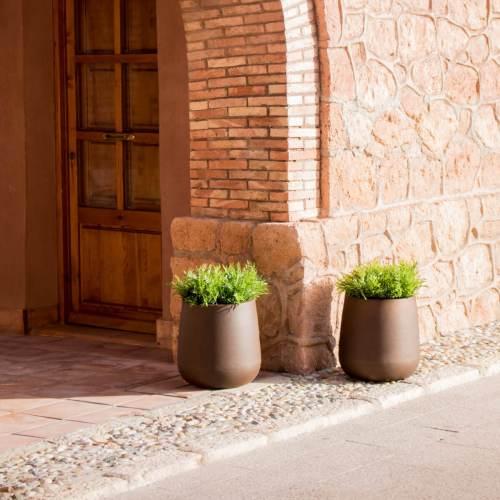 camelia 40 plant pot 1
