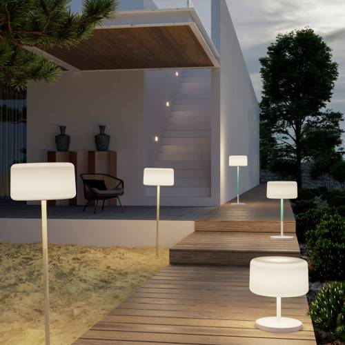 chloe plant outdoor light 1