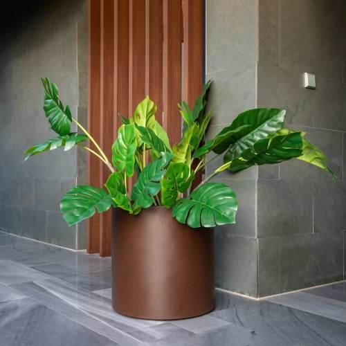 hortensia plant pot 2