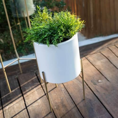 hortensia plant pot 5