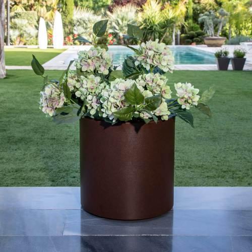 hortensia plant pot 9
