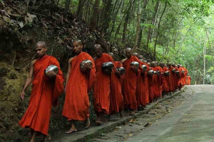 monks fall inline on sidewalk