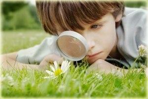 أطفالنا وتربيتهم البيئة Luxuria Tours & Events.jpg
