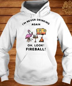 Flamingos I'm Never Drinking Again Oh Look Fireball hoodie