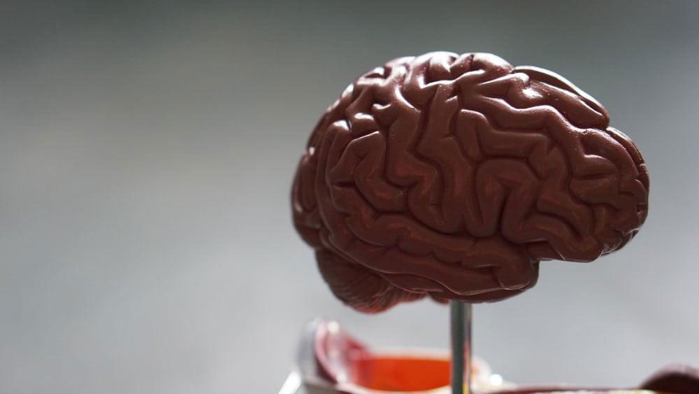 brain-injury-tips