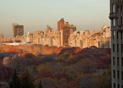 Udsigt til Central Park