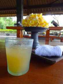 best-5-star-hotel-villa-ubud-alila-bali-luxury-bucket-list-blog-angela-carson-1