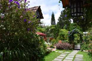 Smokehouse Cameron Highlands Best Heritage Boutique Hotel Video Review by Expat Angela-10