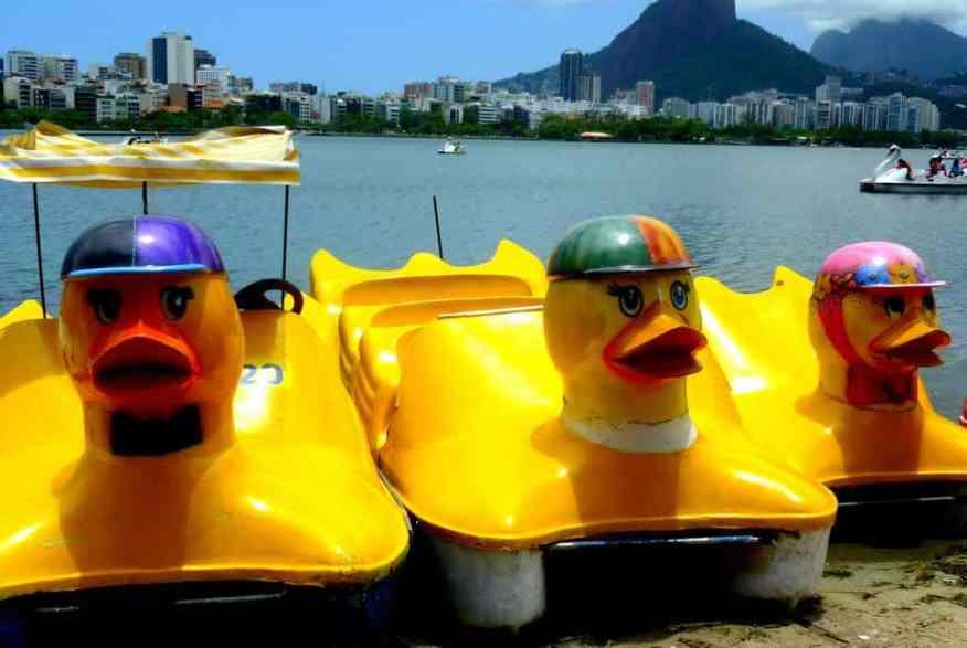 Lagoa ducks Rio