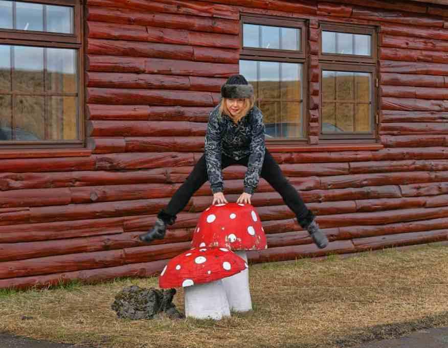 Mushroom_Ranga