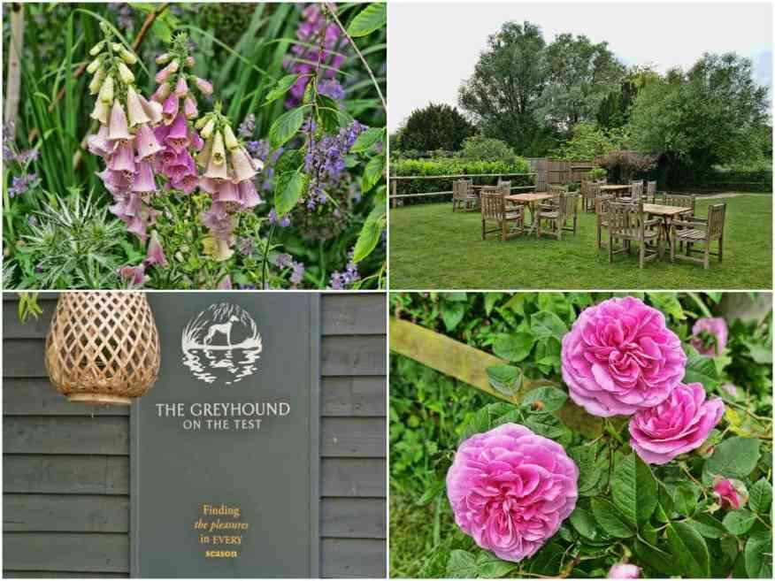 greyhound-stockbridge-garden