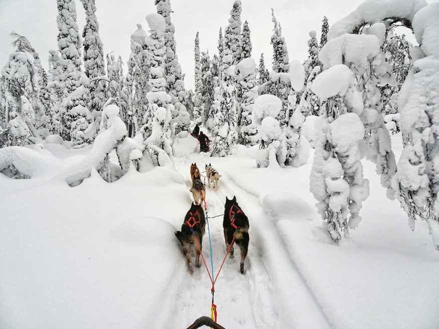 Lapland-finland-luxury-family-destinations