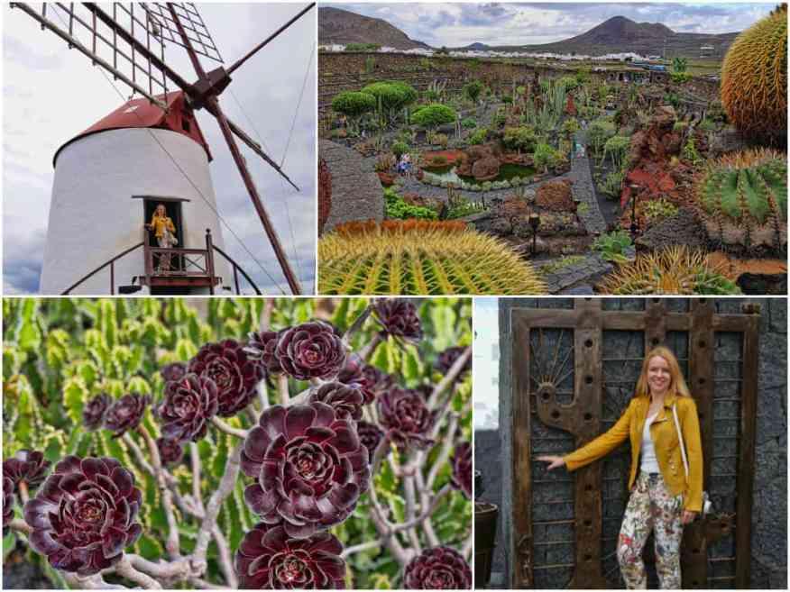 cactus-garden-lanzarote-visit
