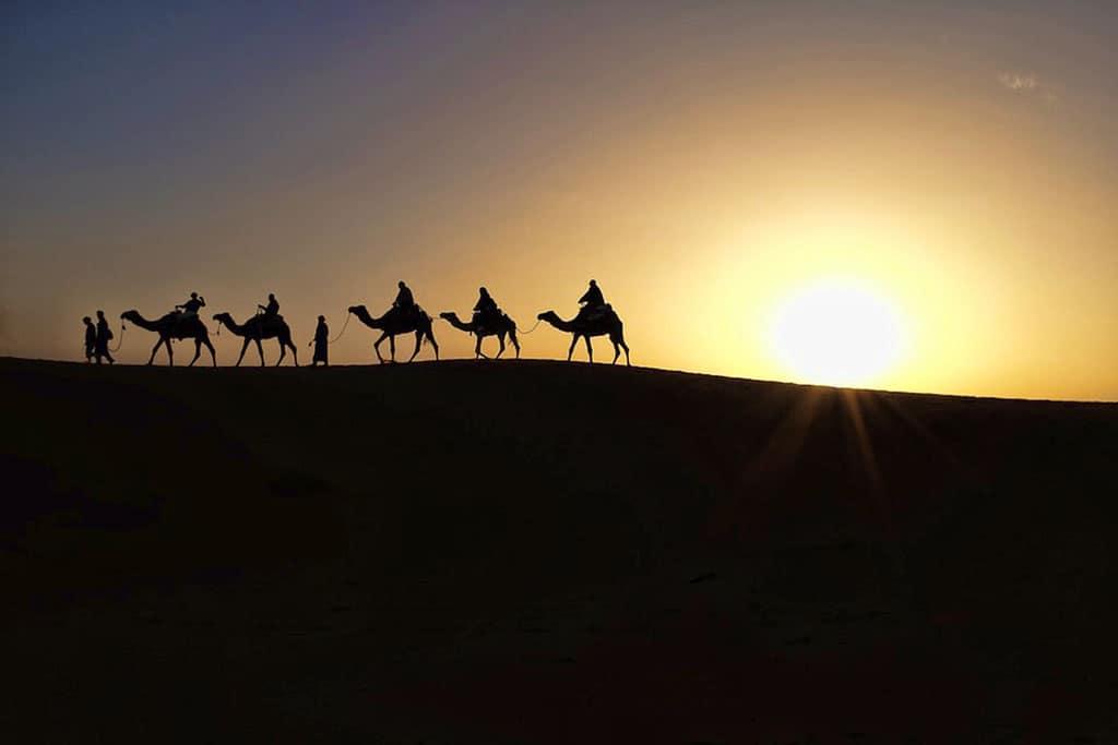 oman-camels-desert