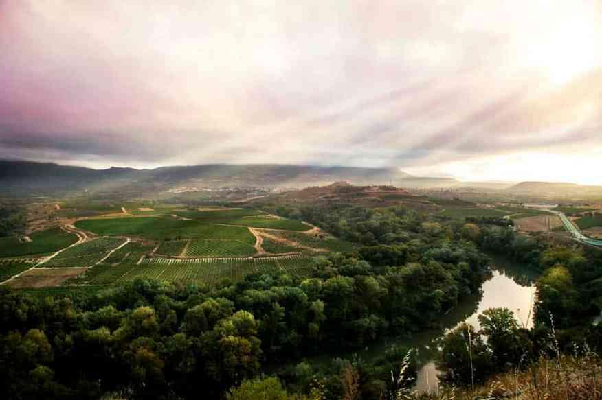 Rioja, Spain landscape