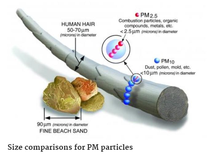 PM Particles Diagram