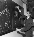 French designer Yves Saint Laurent uses chalk to sketch fashion designs on a chalkboard in the atelier of the House of Christian Dior, where he had just been named as successor to couturier Christian Dior, Paris, France, November 1957