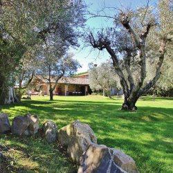 Casolare dei Pini near Capalbio | Tuscan farmhouse with infinity pool
