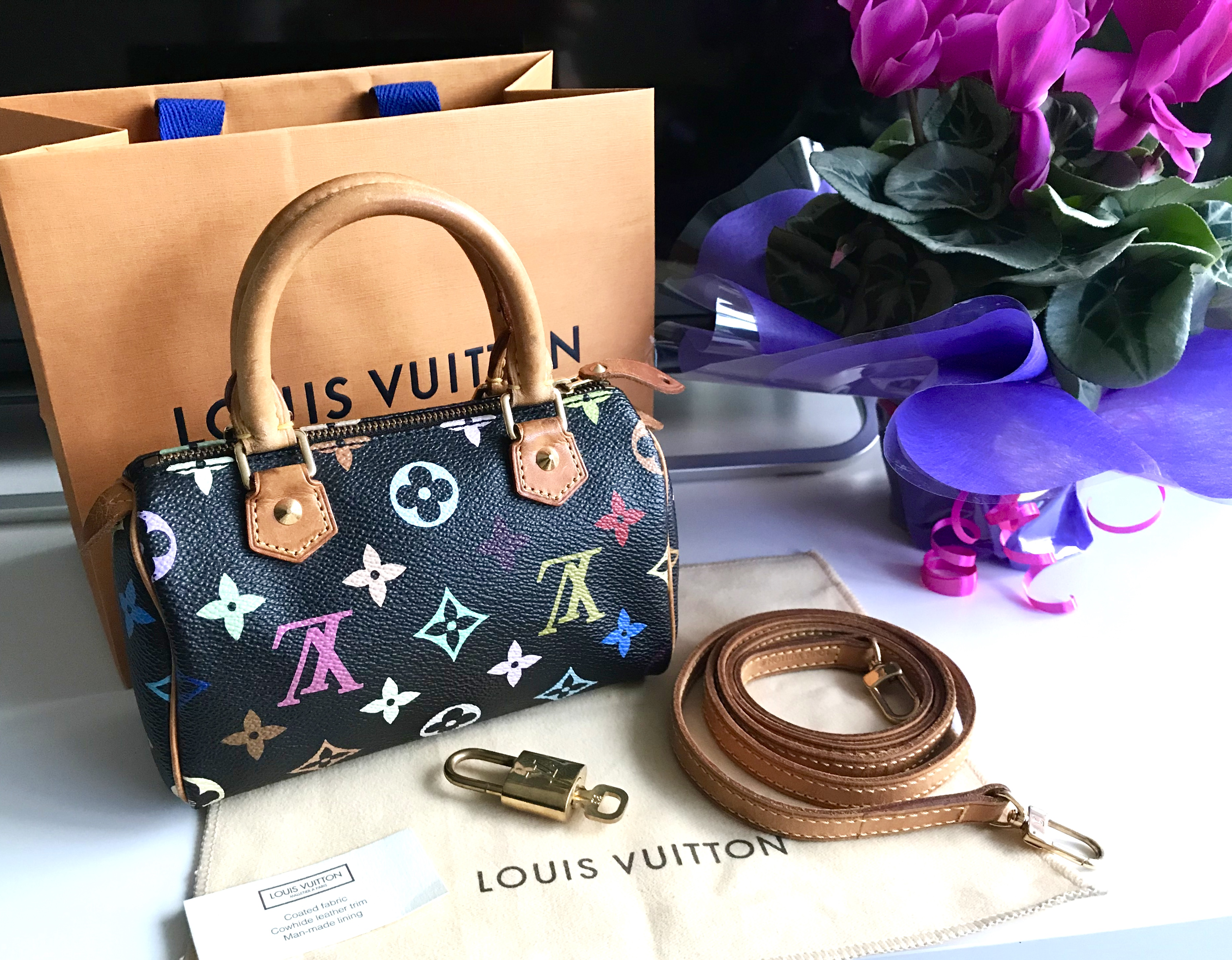 Home   Brand   Louis Vuitton   Louis Vuitton Black Multicolor Mini Speedy  Nano Handbag c2557e8e0397e