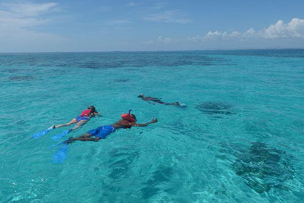 snorkeling tours in Belize