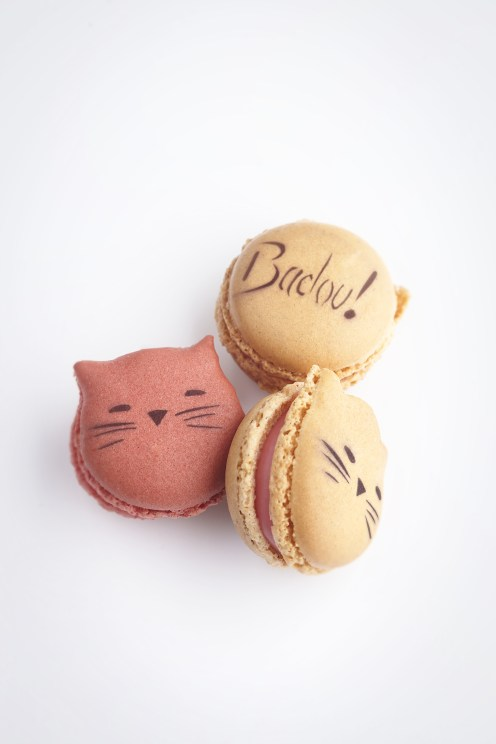 "Packshot Macaron Badou by Len""tre (c)T. Dhellemmes"