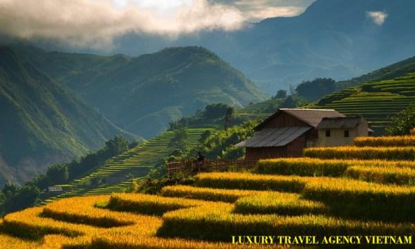 LUXURY TRAVEL AGENT VIETNAM I VIETNAM TRAVEL GUIDE