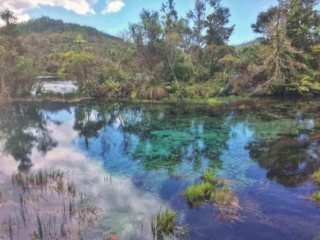 Te Waikoropupu Springs - Bookme NZ