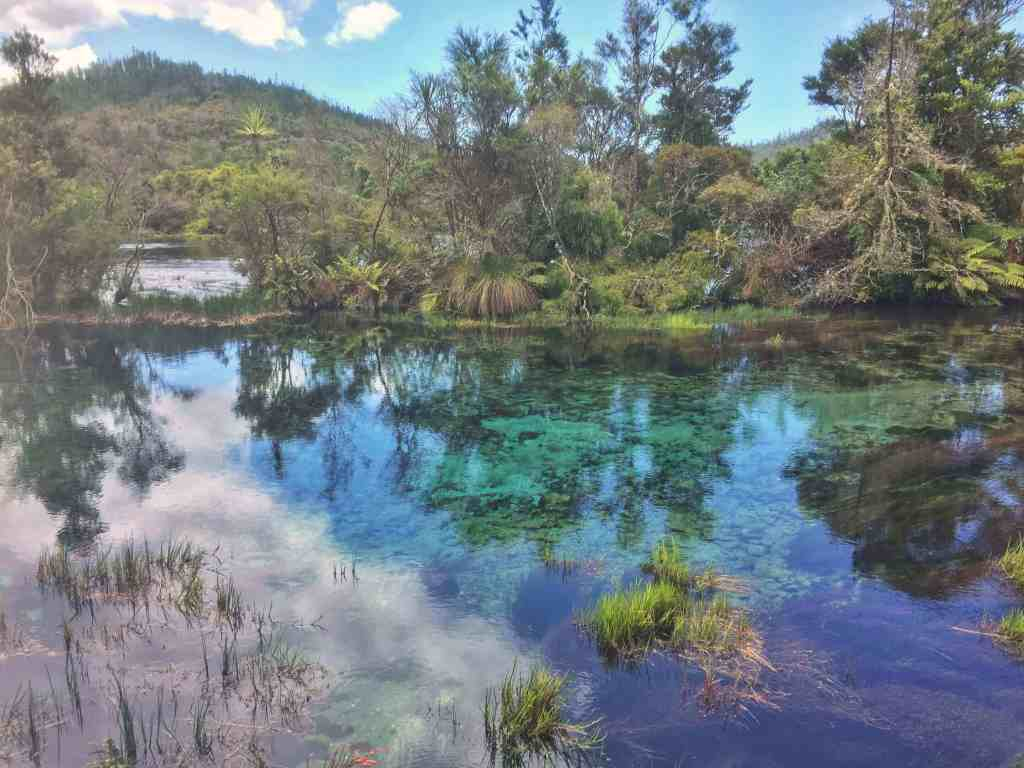 Te Waikoropupu Springs - Bookme NZ
