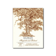 brown_old_oak_tree_save_the_date_postcards-239315063572842333
