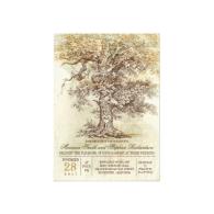 vintage_old_tree_rustic_wedding_invitation-161679333300834859
