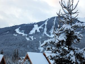 View of Whistler Mountain from Montebello Vacation Rental by Owner in Whistler BC