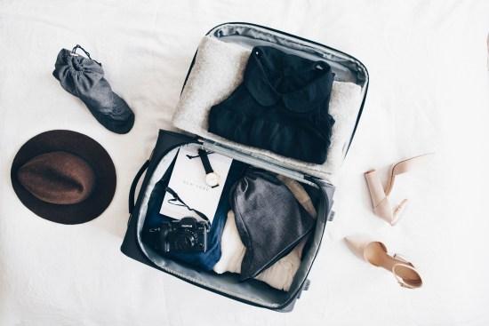 ShoeShoeBags - In Luggage