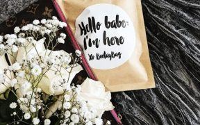 BootayBag Monthly Underwear Subscription