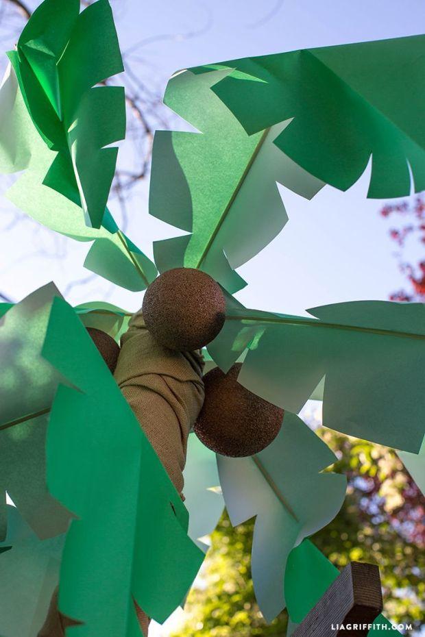 Palm_Tree_Coconuts_.jpg